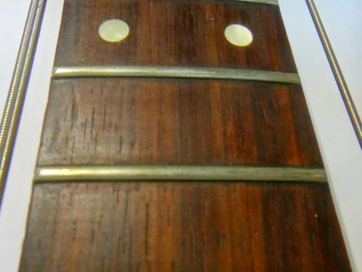 zertifizierung von rio palisander brazilian rosewood cites vermarktungsbescheinigung. Black Bedroom Furniture Sets. Home Design Ideas